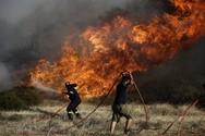 Yψηλός ο κίνδυνος πυρκαγιάς την Πέμπτη στη Δυτική Ελλάδα
