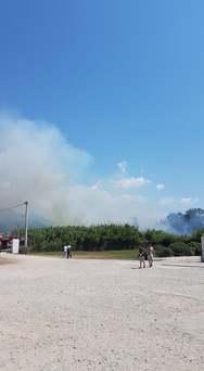 Πάτρα: Ξέσπασε φωτιά στην παραλία των Μποζαϊτίκων (φωτο)