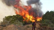 Ξέσπασε πυρκαγιά στον Ριόλο Αχαΐας