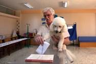 Ο ψηφοφόρος που έκλεψε την παράσταση (φωτο)