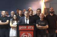 Νίκος Μιχαλολιάκος: 'Η Χρυσή Αυγή δεν τελείωσε'! (video)