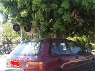 Πάτρα: Δέχτηκε κλήση από την Τροχαία, σε σημείο όπου η σήμανση δεν φαίνεται (φωτο)