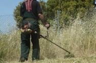 Δήμος Πατρέων - Ανακοίνωση: 'Άμεσα ο καθαρισμός οικοπέδων και ακάλυπτων χώρων'