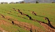 Οικολογική Δυτική Ελλάδα: 'H κλιματική αλλαγή είναι το κεντρικό πολιτικό ζήτημα της εποχής'