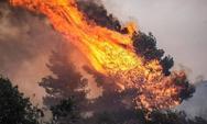 Υπό μερικό έλεγχο η πυρκαγιά στα Μέγαρα