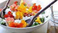 Το Ντουμπάι απαγορεύει τα λουλούδια στη μαγειρική