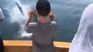 Ο καρχαρίας τους... άρπαξε την ψαριά (video)