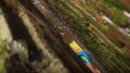 Πιτσιρικάς έπαιζε και σφηνώθηκε ανάμεσα σε δύο τοίχους (video)
