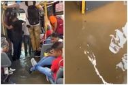 Νέα Υόρκη - Πλημμύρισε λεωφορείο και οι επιβάτες στέκονταν με τα πόδια ψηλά (φωτο)
