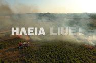 Πύργος: Φωτιά σε εξέλιξη δίπλα σε εργοτάξιο (φωτο)
