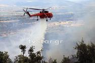 Πυροσβέστες και εναέρια μέσα έσωσαν τον Παρνασσό (φωτο)