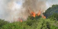 Δυτική Ελλάδα: Σε επιφυλακή οι αρχές για εκδήλωση πυρκαγιάς την Παρασκευή
