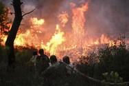 Πολύ υψηλός ο κίνδυνος για πυρκαγιά στην Δυτική Ελλάδα