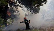 Φωτιά στο Μαραθώνα - Από γη και αέρα η κατάσβεση