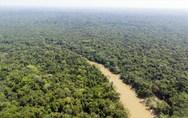 Η Γερμανία ακυρώνει χρηματοδότηση 35 εκατ. ευρώ για την προστασία του δάσους του Αμαζονίου