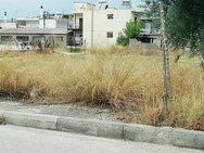Τι κάνει ο Δήμος της Πάτρας με τα δικά του οικόπεδα;