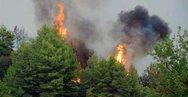 Πυρκαγιά εκδηλώθηκε στο Κιάτο