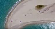 Ποσείδι: Η αμμόγλωσσα - σύμβολο της Χαλκιδικής (video)