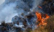 Φωτιά στην Καλλιθέα Αγρινίου - Κινητοποίηση της Πυροσβεστικής
