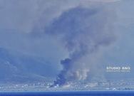Μεγάλη πυρκαγιά στο Άστρος Κυνουρίας (φωτο)