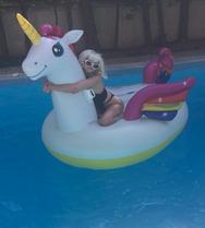 Η Τζούλια Αλεξανδράτου τόπλες στην πισίνα
