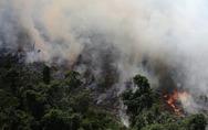 Η νύχτα γίνεται μέρα από τη φωτιά στον Αμαζόνιο (φωτο+video)