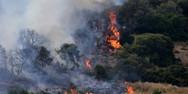 Πυρκαγιά εκδηλώθηκε στα Βασιλικά της Κέρκυρας
