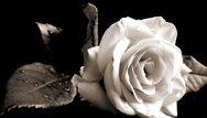 Πάτρα: Συλλυπητήρια Δημάρχου για το θάνατο της Μαρίας Μαυροκεφάλου