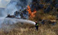Πυρκαγιά ξέσπασε στην Ηλεία - Συναγερμός στην Πυροσβεστική
