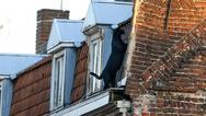 Μαύρος πάνθηρας έκοβε βόλτες στην ταράτσα σπιτιού στη Γαλλία (φωτο)