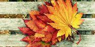 Πότε έρχεται επίσημα το φθινόπωρο;