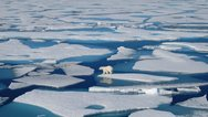 Αρκτική: Ξεκινά η μεγαλύτερη επιστημονική αποστολή για την κλιματική αλλαγή
