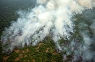 Αμαζόνιος: Αυξήθηκε ο αριθμός των παιδιών με αναπνευστικά προβλήματα