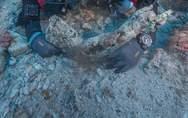 Ξεκινά η αρχαιολογική έρευνα στο Ναυάγιο των Αντικυθήρων