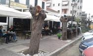 ΟΙΚΙΠΑ: 'Υπερβολικά τα κλαδέματα, ζωτική ανάγκη το πράσινο στην πόλη'