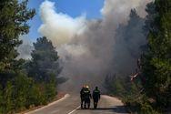 Αργολίδα: Φωτιά σε χαράδρα – Επιχειρούν 2 πετζετέλ