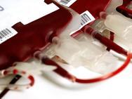 Πραγματοποιήθηκε αιμοδοσία από τους Ηπειρώτες της Πάτρας