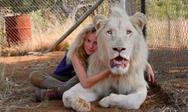 'Το κορίτσι και το λιοντάρι' έρχεται στους κινηματογράφους (video)