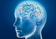Ο εγκέφαλος χρειάζεται από 100 έως 300 χιλιοστά του δευτερολέπτου για να αναγνωρίσει έναν οικείο ήχο