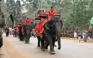 Καμπότζη: Απαγορεύτηκαν οι βόλτες με ελέφαντες