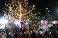 Αίγιο - To Πάρκο των Χριστουγέννων: Την Πέμπτη ξεκινά το «Ταξίδι στη Χώρα που Τίποτα δεν Πάει Χαμένο»!