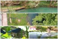 Πηγές Λάδωνα: Παραμύθι στο νερό (video)