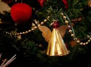 Τι να προσέχετε αν έχετε χριστουγεννιάτικο δέντρο!