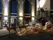 Το αρχοντικό στα Ψηλαλώνια της Πάτρας που σε βάζει στη μαγεία των γιορτών (pics)