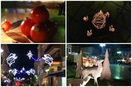 Βραδινή Χριστουγεννιάτικη μαγεία στην Πάτρα (video)