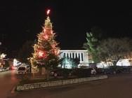 Κερδίζει τις εντυπώσεις, το χριστουγεννιάτικο δέντρο στην είσοδο των Καλαβρύτων!