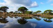 Εθνικό Πάρκο Κοτυχίου - Στροφυλιάς: Δολοφονική επίθεση λαθροθήρα κατά οικολόγων