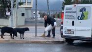 Ο Δήμαρχος Αχαρνών έστειλε υπαλλήλους να ταΐσουν τα αδέσποτα
