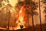 Αυστραλία: Αισιοδοξία στους πυροσβέστες - Υπό έλεγχο μια μεγάλη φωτιά
