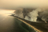 Αυστραλία - Queen και Alice Cooper θα τραγουδήσουν για τους πληγέντες από τις πυρκαγιές